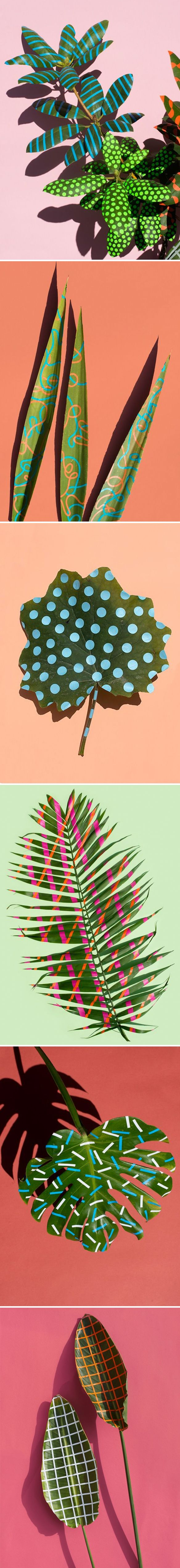 sarah illenberger. Plain backgrounds, patterned objects. Or vice versa