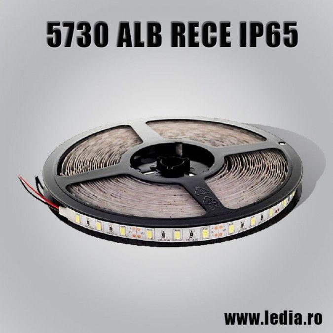 BANDA LED 5730 ALB RECE IP65 12V