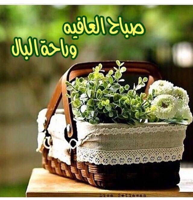 صباح العافية و راحة البال Good Morning Arabic Picnic Basket Morning Messages