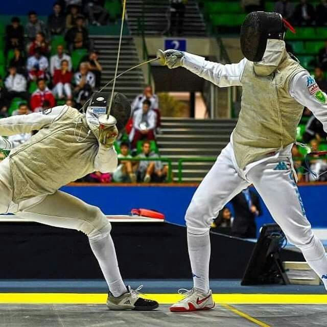 337 Best Fencing Photos Images On Pinterest