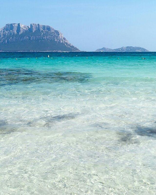 Panorami speciali  #sasenasappara#capoceraso #sardegna #sardinia#lanuovasardegna #instasardegna #focusardegna #sardegnaofficial #igersardegna#igersassari#sardegna_reporter #volgosardegna#sardiniamylove #sardegnareflex#sardinia_exp#beach#sardegnageographic #ig_skyline #sardiniain #beautiful #sardinianworld#italian_trips#volgoitalia#paradise#nofilter#italy#likes_sardegna