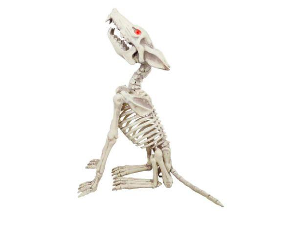Animated Howling Skeleton Wolf Lifelike Sound Halloween Decor Led
