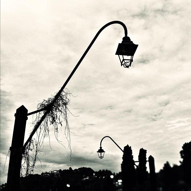 Flawed Sentinels - @tonick- #webstagram