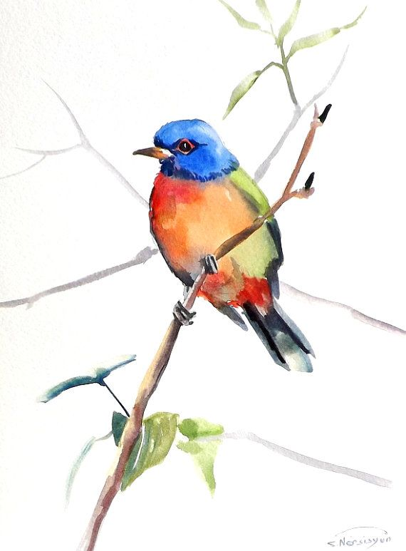 Painted Bunting, original watercolor painting, 12 X 9 in, colorful birds, blue red green