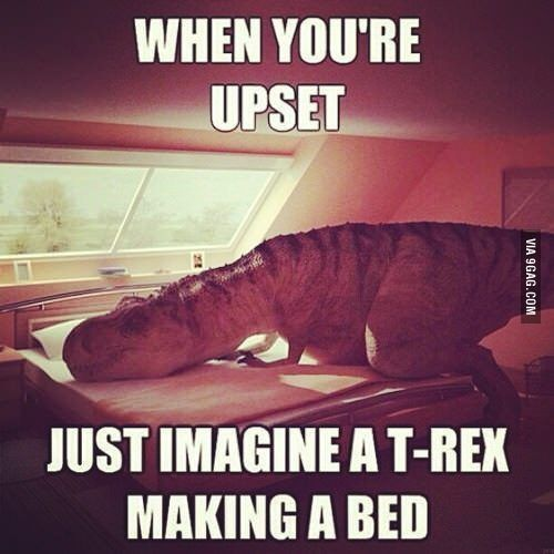 This Always Makes Me Laugh When I M Having A Bad Day Bad Day Humor Laugh Meme Laughing Quotes Funny