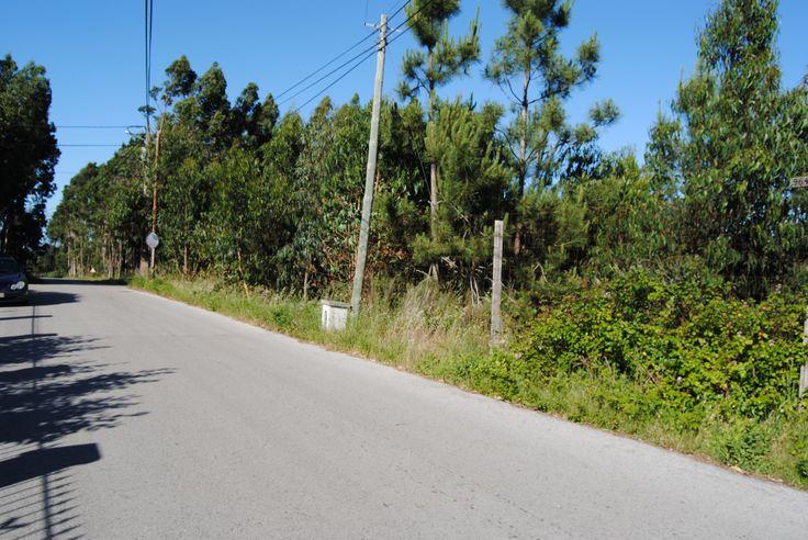A 5 minutos da praia Foz do Arelho. Terreno localizado em zona extremamente sossegada, às portas da cidade de Caldas da Rainha, em zona residencial.