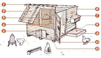 Construire un poulailler solide et sain pour les poules, adapté au climat de la région, à la disponibilité de son propriétaire et aux races de poules qu'il héberge, c'est construire un bon poulailler.