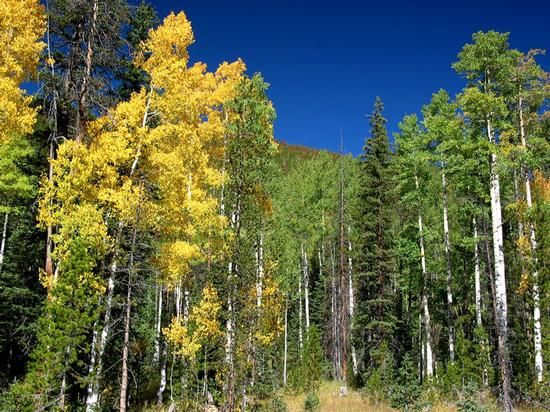 Heber Valley Tourism and Economic Development | Recreation... Hikes and fun things to do outdoors in Wasatch County