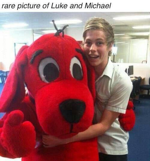 The funny thing is that I have tried on that Clifford costume.  It's from book week.  So technically I have touched luke hemmings
