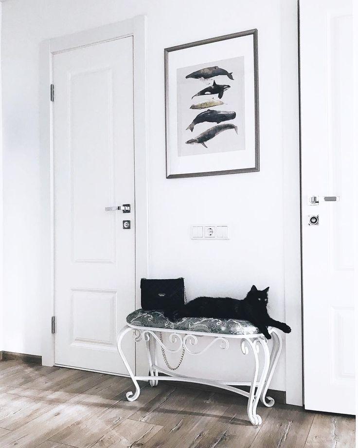 #home #design #interior #cat