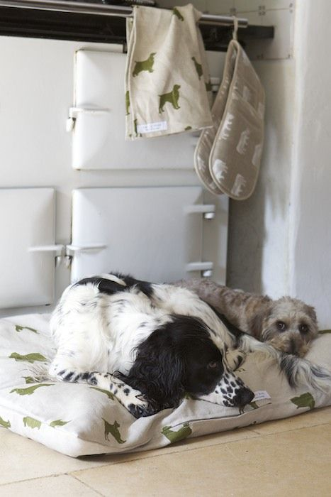 Emily Bond The Spaniels fabric, being put to good use by a warm Aga