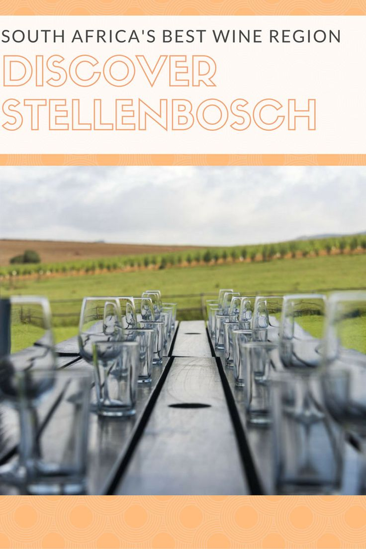 What to do in Stellenbosch - Where to drink wine in South Africa and the best wine in Stellenbosch and the South Africa Winelands! Where to stay in Stellenbosch and what to eat