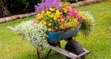 оригинальный садовый вазон для цветов
