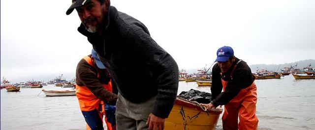 Piden a legisladores intervenir a favor de pescadores artesanales por crisis del sector en el Biobío