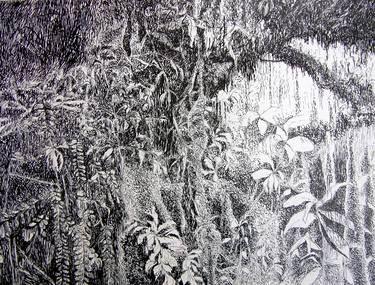 "Saatchi Art Artist Maria Westra; Drawing, ""DREAMGARDEN"" #art  https://www.youtube.com/watch?v=ksLWULWKoM4"