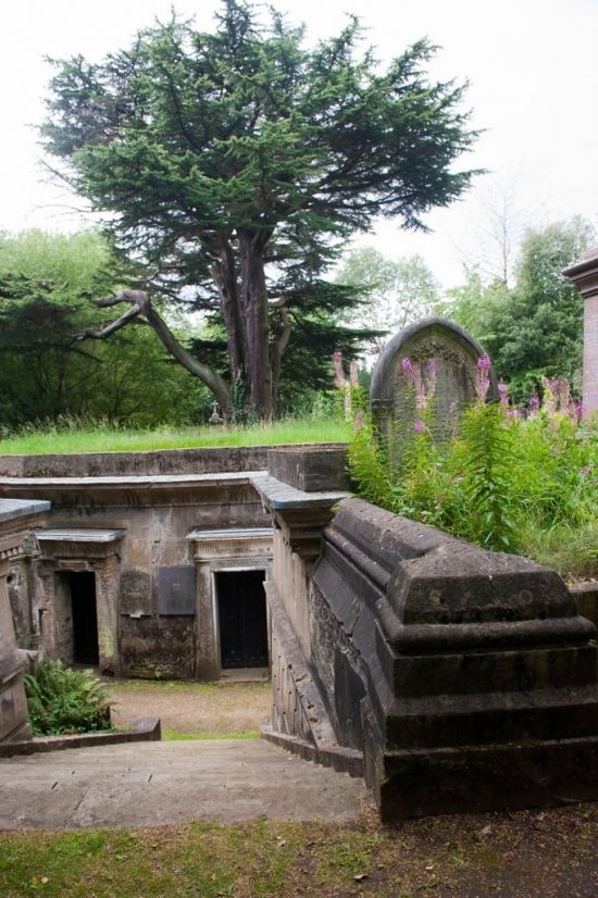only paid tours of West Cemetery but East Cemetery is free to tour. West looks good! West Cemetery - Highgate Cemetery