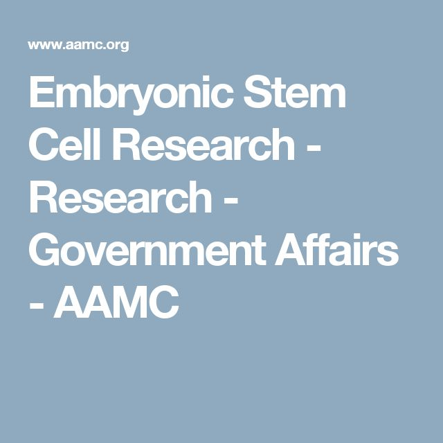 embryonic stem cell research pros essay Statement: embryonic stem cells should be made available for scientific research there exists a widespread controversy over embryonic stem cell research that emanates from the techniques used in the creation and usage of stem.