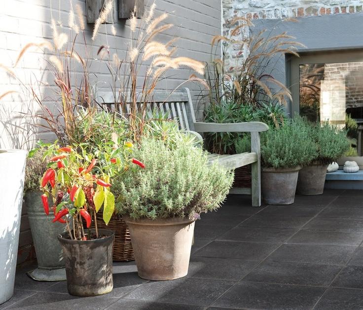 Tegola ligne 40x40x4 zwart gevlamd knap plaatje weelderig bloeiende potten en een robuuste - Creeren van een tuin allee ...