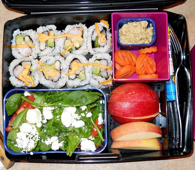 Sushi Laptop Lunch
