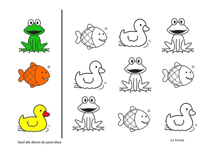 geef de dieren de juiste kleur thema in en rond de vijver