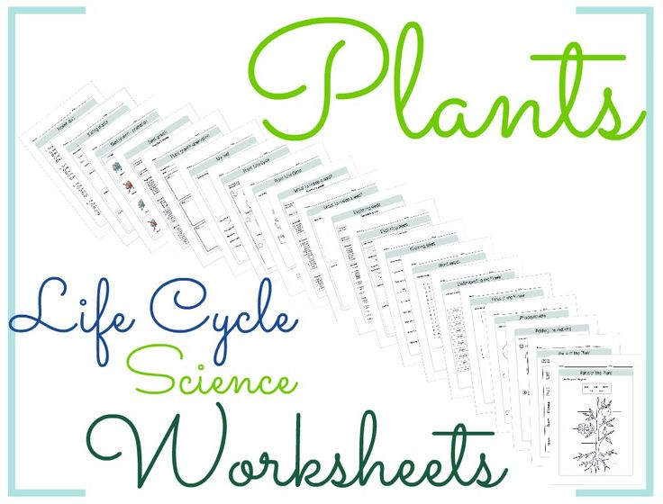 Alphabet Practice Worksheet  Best Science Images On Pinterest Verb Practice Worksheets Excel with Logarithm Worksheet Puzzle Excel Plants Life Cycle Science Worksheets Multiplication And Division Of Integers Worksheets