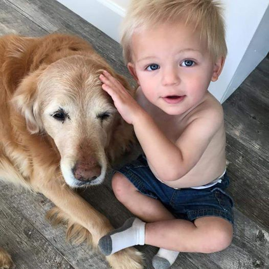 Shout out to our #pawperpal Kelly Parrish! (Her grandson is pictured with her pup!) For the month of April, she will donate 10% of her earnings from her homemade dog treats to #pawper! PM her to place orders and thank you everyone for your ongoing support!