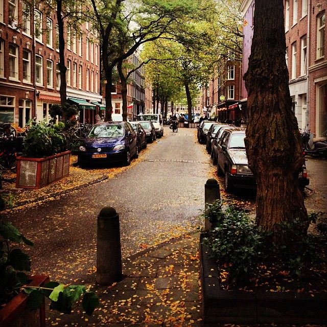 Cosy Amsterdam street on my way to lunch with @Rebecca Laurey earlier.