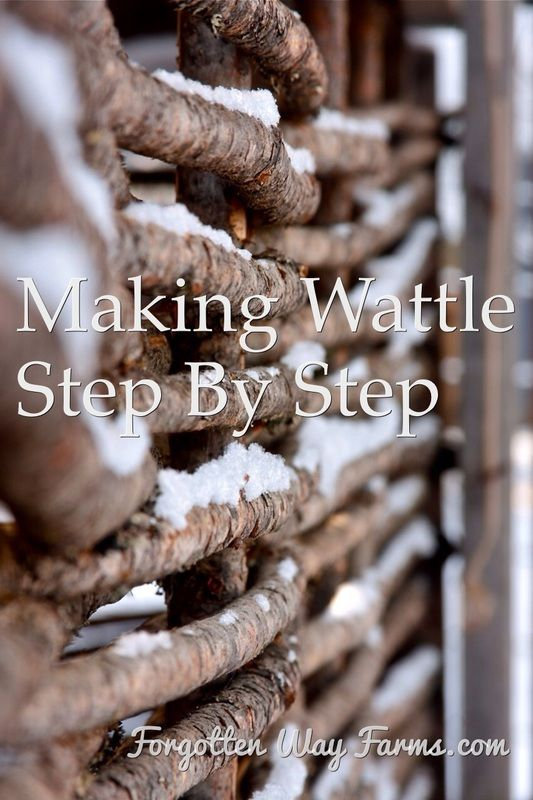 Building wattle step by step - Forgotten Ways Farm