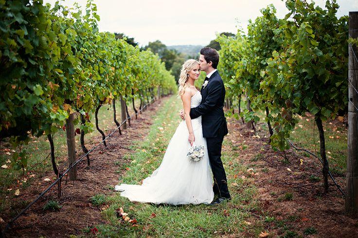 That vineyard shot!