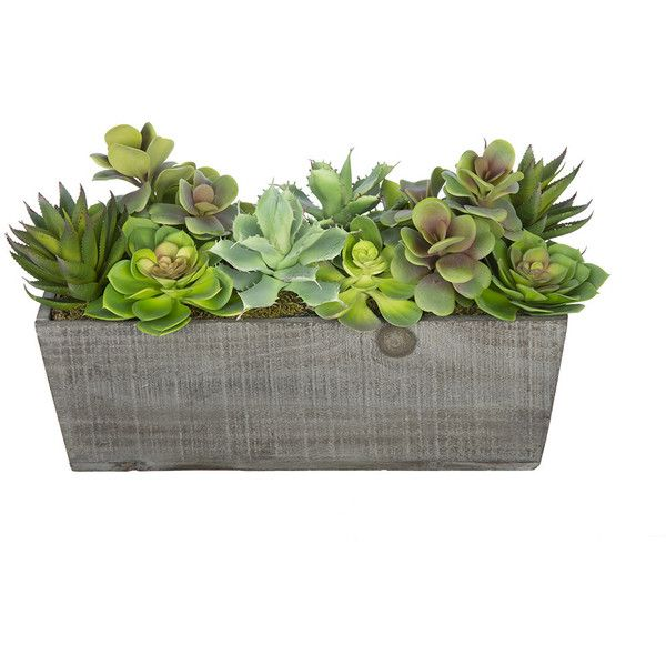 artificial succulent garden desk top plant in decorative vase 105 liked on polyvore