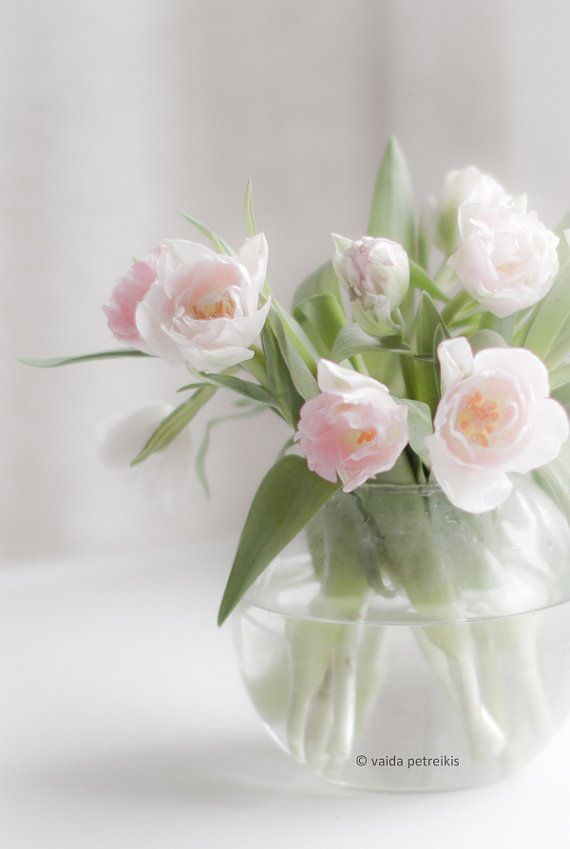 Gentleness - 4x6 inches Fine Art Photograph - a natural bouquet of soft pink tulips - floral art, very romantic on Etsy, €8,84