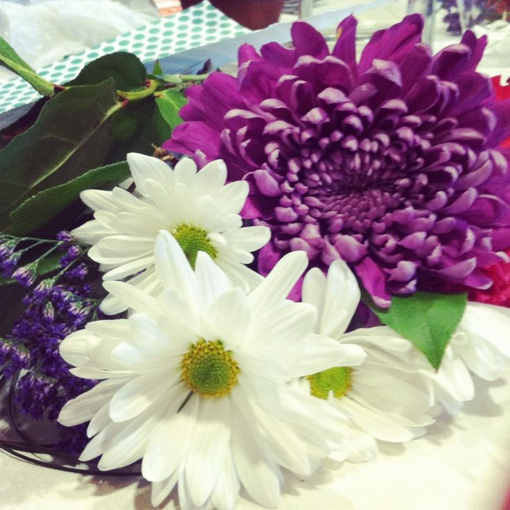 Different Types Of Flowers: 10 Best Images About 9.DIFFERENT TYPES OF BEAUTIFUL