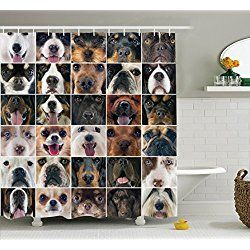 Delightful Dog Lover Decor Collection, Chihuahua Chow Chow Cocker Spaniel Poodle  Purebred Sheepdog, Shower Curtain