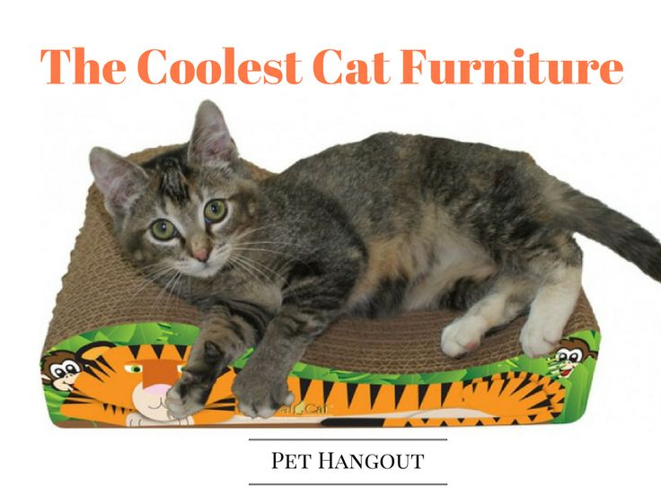 Pet Hangout has the coolest cat scratching furniture you will find anywhere.  Check it out: https://pethangout.com/cat-stuff/cat-scratching-furniture