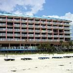 Osprey on the Gulf (Panama City Beach, FL) - Motel Reviews - TripAdvisor