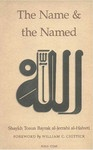 A presentation of the 99 Most Beautiful Names by Tosun Bayrak - essential reading.