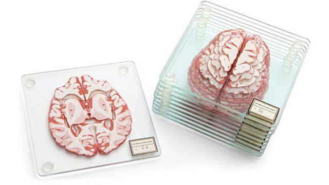 人体の不思議展さながら、スライス脳みそコースター