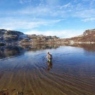 Fishing in Lifjell and Bøelva, Norway. www.inatur.no/fiske/52c6a280e4b0ec38957a2898/velkommen-til-fiske-i-lifjell-og-boelva | Inatur.no