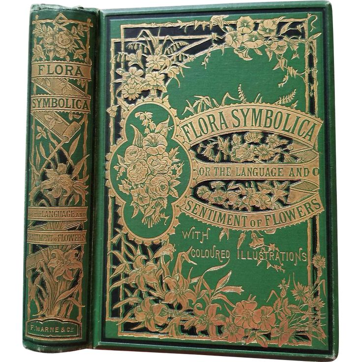 Language and Poetry of Flowers History Illustrated Fancy Cover. This exceptional book is entitled Flora Symbolica or the Language and Sentiment of