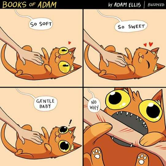 Image result for adam ellis cat comics
