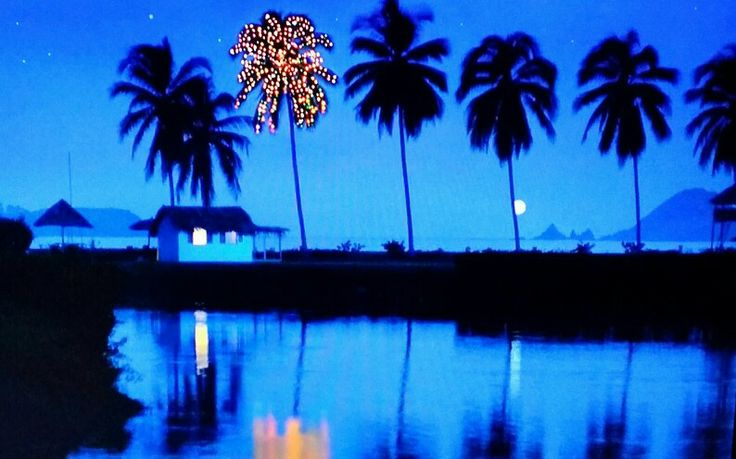 Corona Christmas Lights