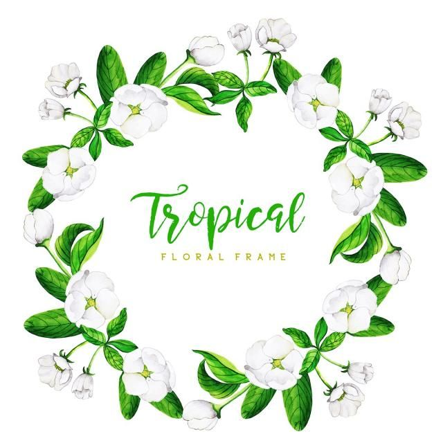 Watercolor Tropical Floral Frame Background Color Floral Flowers Png And Vector With Transparent Background For Free Download Floral Floral Background Watercolor Flower Background