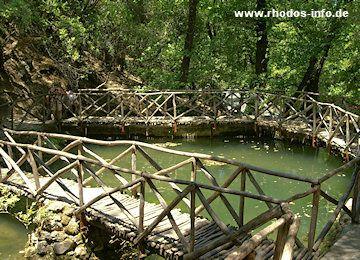 Petaloudes - das Schmetterlingstal auf Rhodos