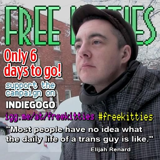 #freekitties is 20% funded! Only 6 days left to go <3 igg.me/at/freekitties  #SharingIsCaring #LGBT #trans #transguy
