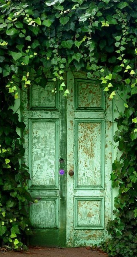 Green Ivy Covered Doorway