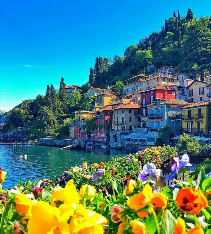 In The Spring Como Lake Italy Comersee Italien