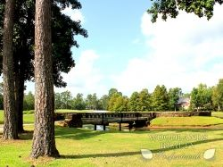 Bridge for pedestrian walking across the lake in the middle of a park in the Woodlands - Gallery - Woodlands Realty Pros