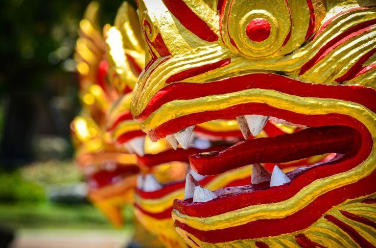 Painted dragons, Phuket, Thailand