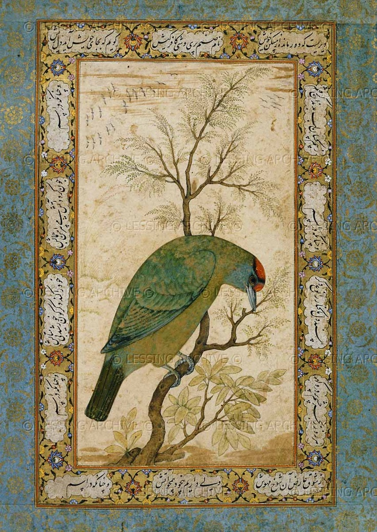 MOGHUL MANUSCRIPT, ILLUMINATED 17TH CENTURY Mansur,Ustad A Barbet (Himalayan blue-throated bird). Ustad Mansur was a 17th century Mughal painter who specialised in depicting plants and animals. Jahangir Period, Mughal miniature painting; 1615.