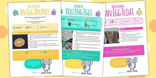 Egg Science Experiments At Home